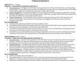 Job Interview Resume Model A Model Resume Career Portfolio to Land A Dream Job