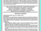 Job Interview Resume Zone Electronic theses Dissertations Kent State University