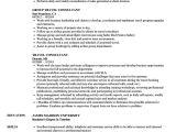 Job Related Resume format Curriculum Vitae Travel Consultant Joshymomo org