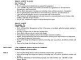 Job Related Resume format Travel Agent Resume Samples Velvet Jobs