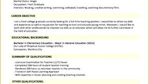 Jobstreet Resume Sample 5 Jobstreet Resume Sample Free Samples Examples
