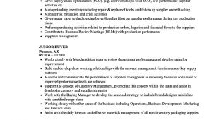 Junior Buyer Resume Sample Junior Buyer Resume Samples Velvet Jobs