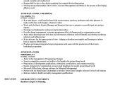 Junior Planning Engineer Resume Junior Planner Resume Samples Velvet Jobs