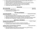 Junior Student Resume 30 Accountant Resume Templates Pdf Doc Free