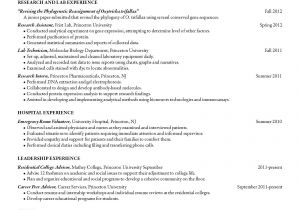 Junior Student Resume Sample Resumes Junior Student Career Services Resume Cv