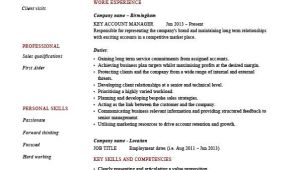 Key Account Manager Resume Sample Key Account Manager Resume Customers Job Description Cv