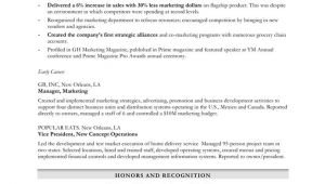 Kitchen Steward Sample Resume Chief Steward Resume Resume format Websitereports45 Web