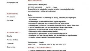 Kitchen Supervisor Resume Sample Kitchen Manager Resume Example Sample Cooking Food