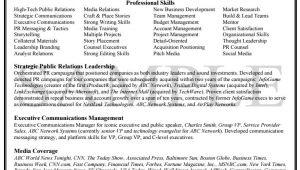 Knock Em Dead Resume Templates Knock Em Dead Professional Resume Writing Services