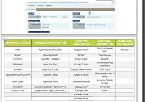 Knowledge Base Document Template Bulk Upload Template Excel format Modern