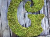 Large Moss Covered Letters Large Moss Covered Letter G 24 Letter Any Letter by