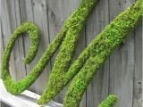 Large Moss Covered Letters Large Moss Covered Letter M Rustic Wedding Sign by