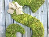Large Moss Covered Letters Large Wood Letter S Covered In Moss Rustic by Vintageshore
