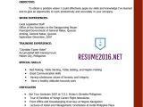 Latest Job Resume format 15 Latest Resume format Doc 2015 Cv Templates