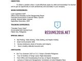 Latest Resume Sample Resume Templates 2016 which One Should You Choose