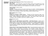 Law Firm Business Plan Template Free Business Plan Template Law Firm Moderndentistry Info is