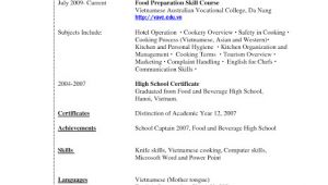 Law Student Resume with No Legal Experience Resume Template for College Students with No Experience