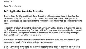 Layout Of Cover Letter for Job Application Cover Letter Layout for Job Application Dental Vantage