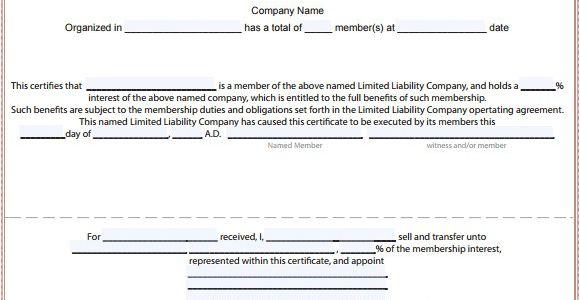 Llc Membership Certificate Template 15 Membership Certificate Templates Free Samples