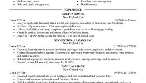 Loan Officer Resume Sample Best Loan Officer Resume Example Livecareer