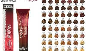 Loreal Professional Hair Colour Shade Card Pin by Paula Farias On Ideias De Cabelo Hair Color Chart