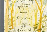 Lost America the Beautiful Card Hallmark Sympathy Loss Of Pet Card Friendship Of A Pet