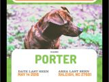 Lost Animal Flyer Template Find Your Lost Pet