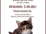 Lost Cat Flyer Template Word 10 Missing Lost Pet Poster Templates Free Word Templates