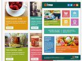 Mailchimp Ecommerce Templates Mailchimp Newsletter Templates Free Download Templates