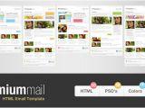 Mailchimp Premium Templates Mailchimp Premium Templates