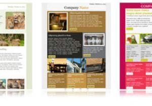 Mailchimp Sample Templates Newsletter Templates for Mailchimp Email Newsletter