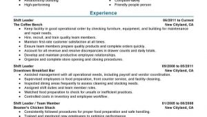 Manager Resume Sample 11 Amazing Management Resume Examples Livecareer