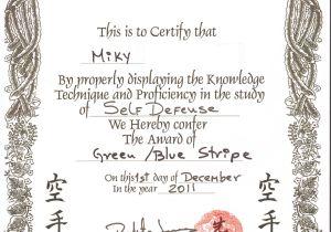 Martial Arts Gift Certificate Template Karate Certificate Template Mangdienthoai Com