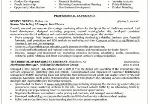 Mba Marketing Experience Resume Sample Sample Resume Mba Marketing Experience