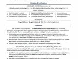 Mba Student Resume Mba Resume Sample Monster Com