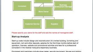 Medical Marijuana Business Plan Template Medical Marijuana Dispensary Business Plan Sample Pages