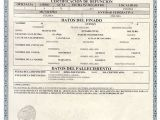 Mexican Death Certificate Template Death Certificate Acta America