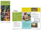 Microsoft Office Publisher Templates for Brochures organic Food Brochure Template Word Publisher