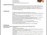 Modelo De Resumen Profesional Curriculum Vitae Profesionales