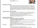 Modelo De Resumen Profesional Curriculum Vitae Resumen