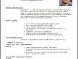 Modelo De Resumen Profesional Curriculum Vitae Resumen Profesional