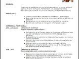 Modelo De Resumen Profesional Modelo Curriculum Vitae Enfermera De Obstetricia