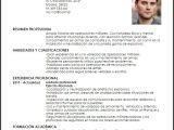 Modelo De Resumen Profesional Modelo Curriculum Vitae soldado De Infanteria Profesional