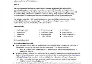 Monster Jobs Resume Template Monster Resume Template Free Samples Examples format