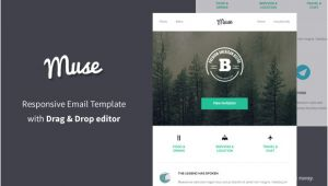 Muse Email Templates Muse Responsive Email Builder Email Templates On