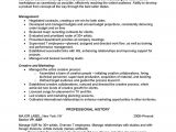 Musician Resume Samples Music Resume Best Template Collection