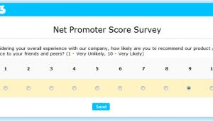 Net Promoter Score Survey Template Using the Net Promoter Score to Get Valuable Feedback
