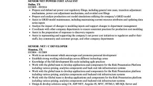 Net Resume Sample Senior Net Resume Samples Velvet Jobs
