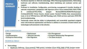 Networking Resume Word format top 5 Network Security Engineer Resume Samples In Word