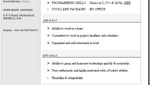 New Resume format In Word Beautiful Resume format In Word Free Download